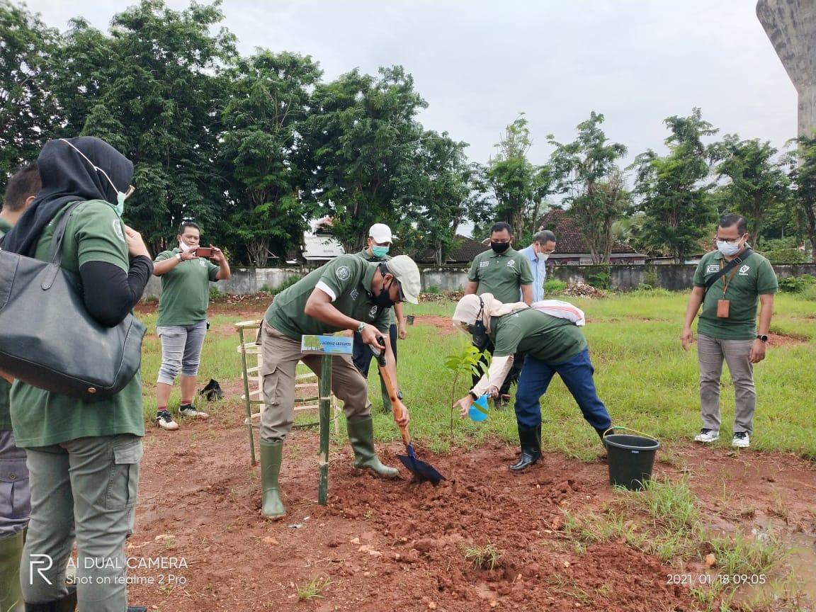 kembalikan warisan alam, pt.garam tanam 1000 pohon